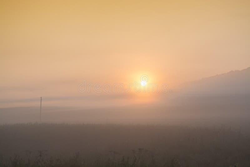 Backround de niebla Puesta del sol amarilla foto de archivo