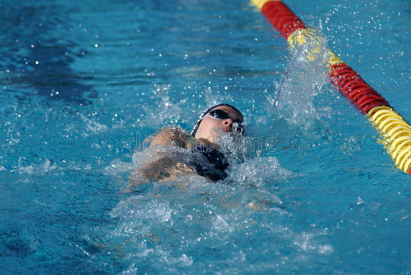 Backstroke Swimmer. Young woman competing in the backstroke event at a swim meet stock image