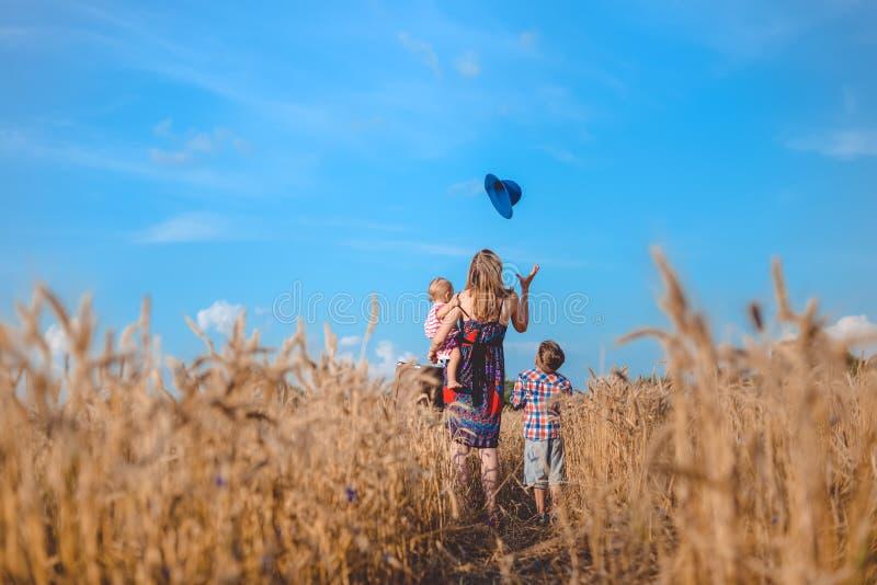 Backview матери и 2 детей в пшенице лета стоковые изображения