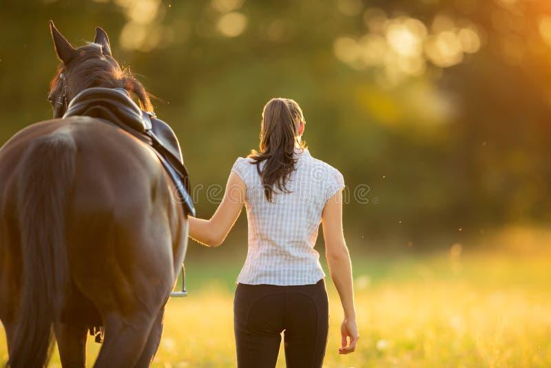 Backview av den unga kvinnan som går med hennes häst i aftonsolnedgång arkivbild