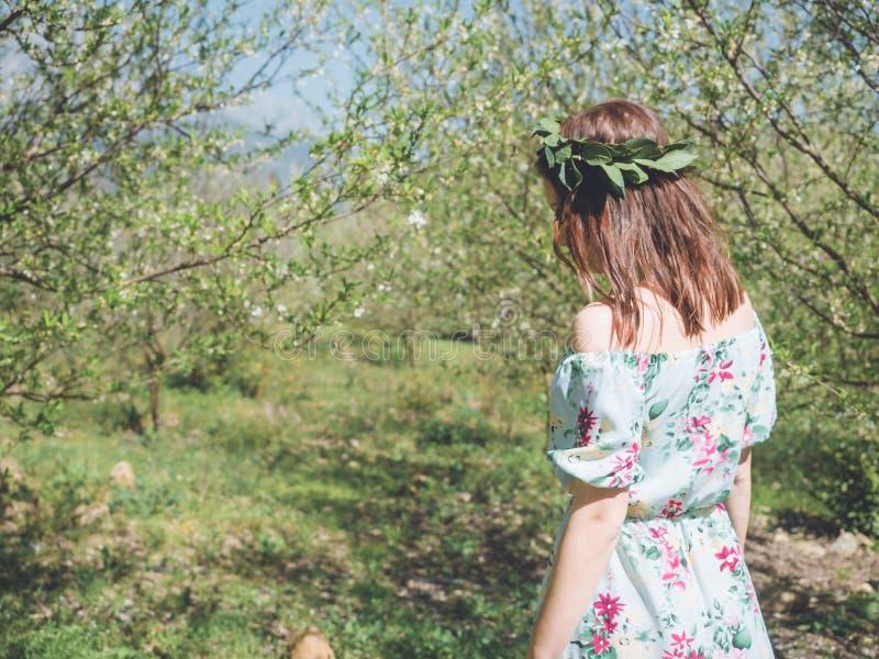 Backview de la mujer hermosa joven en árboles del flor de la primavera fotografía de archivo libre de regalías