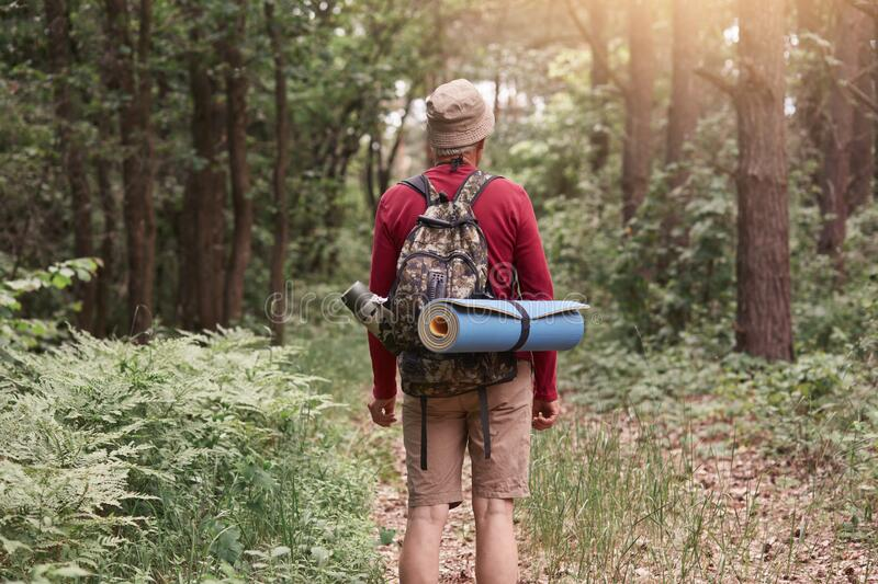 Backwards of man wearing hat, red sweater and beige trousers, posing with backpack and sleeping pad, looking at paths, surrounded stock photos