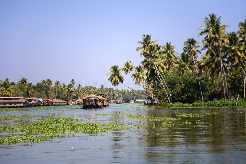 Download Backwaters stock image. Image of colorful, palm, hotel - 8342863