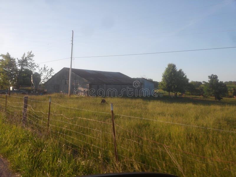 Backwoods barn stock image