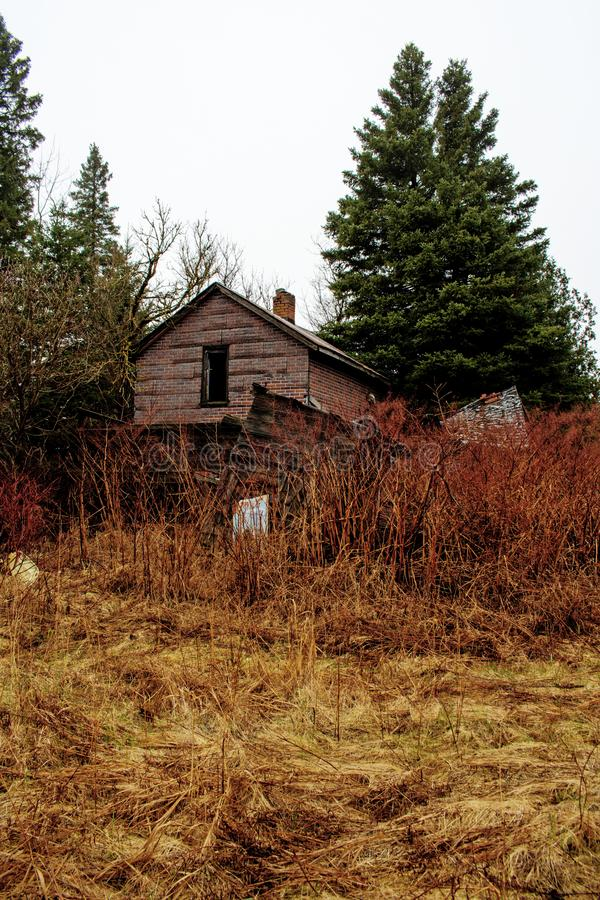 Backyard Of An Abandoned House In The Woods stock image