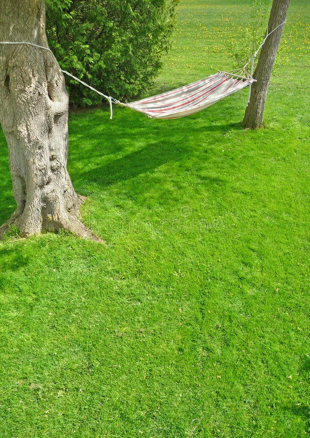 Backyard hammock on a sunny spring day. Image of a backyard hammock on a sunny spring day royalty free stock photography