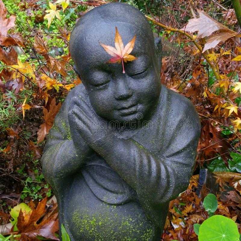 Backyard Maple Buddha royalty free stock photo