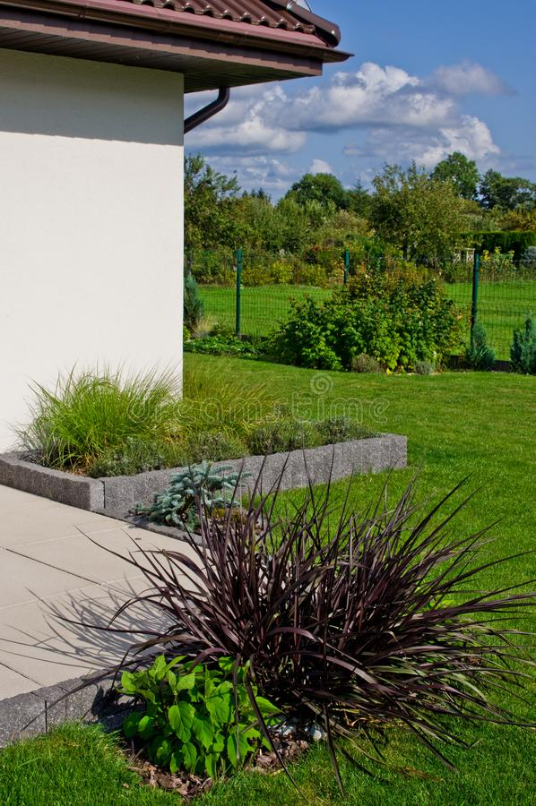 Modern home garden design detail with various grass plants royalty free stock photography
