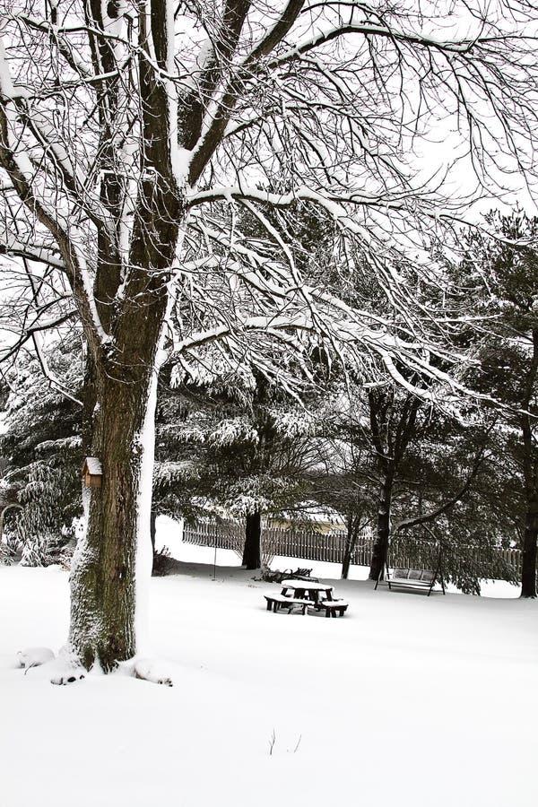 Download Backyard Snow Scene II stock image. Image of landscape - 18058389