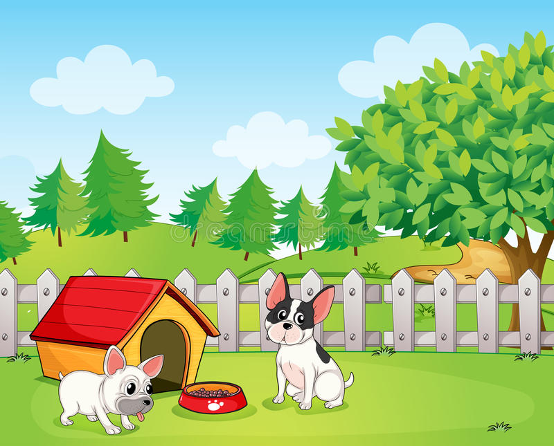 A backyard with two dogs. Illustration of a backyard with two dogs stock illustration