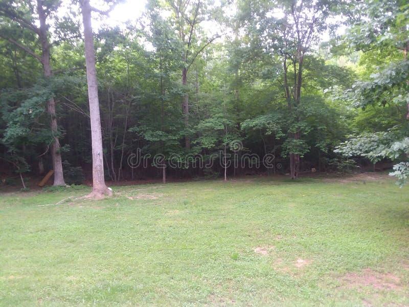Backyard view stock photography