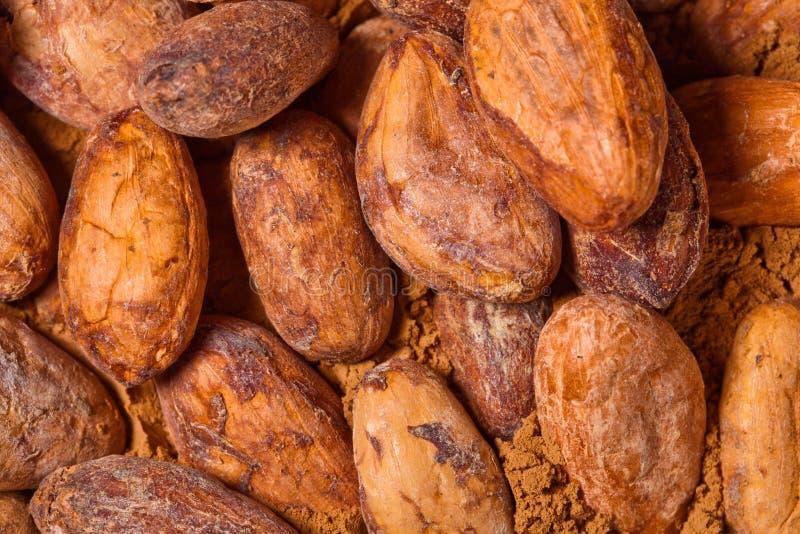 Baclground какао стоковое изображение rf