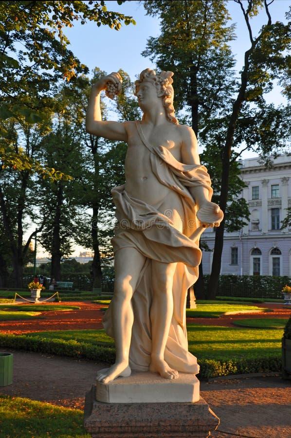 Baco no jardim do verão em St Petersburg imagem de stock