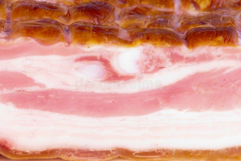 bacon royaltyfria foton