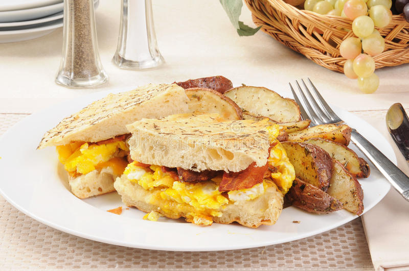 Download Bacon and egg panini stock image. Image of brunch, eggs - 25499769