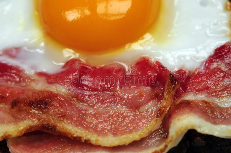 Download Bacon and fried egg stock photo. Image of white, unhealthy - 12670100