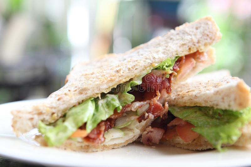 Bacon Sandwich. In close up stock photography