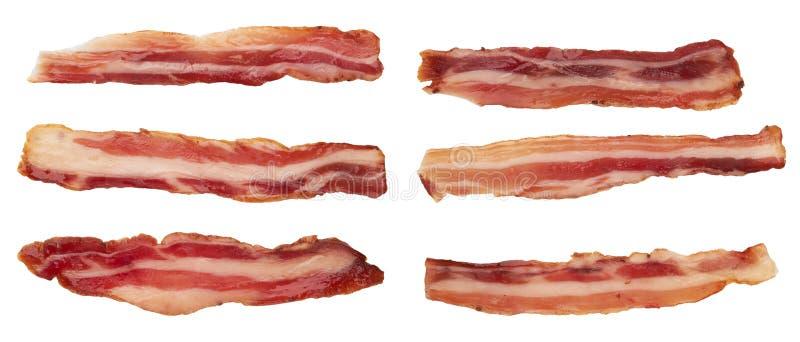 Bacon on white. Raw bacon isolated on white background stock photography