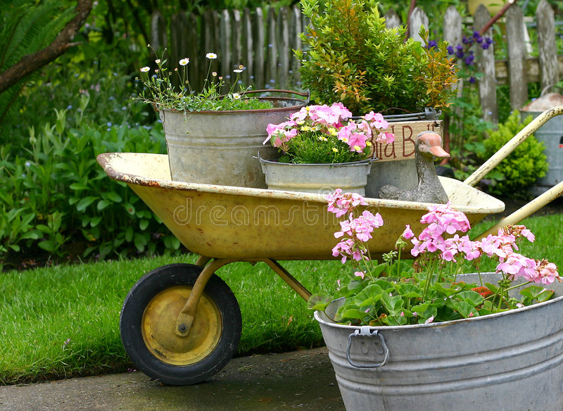 Bacs de jardinage image libre de droits