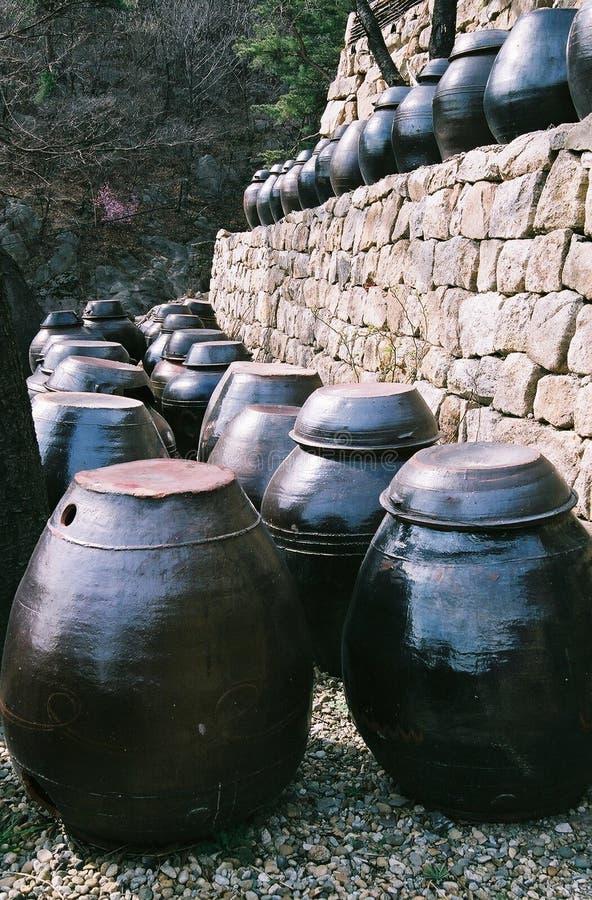 Bacs de Kimchi photographie stock libre de droits