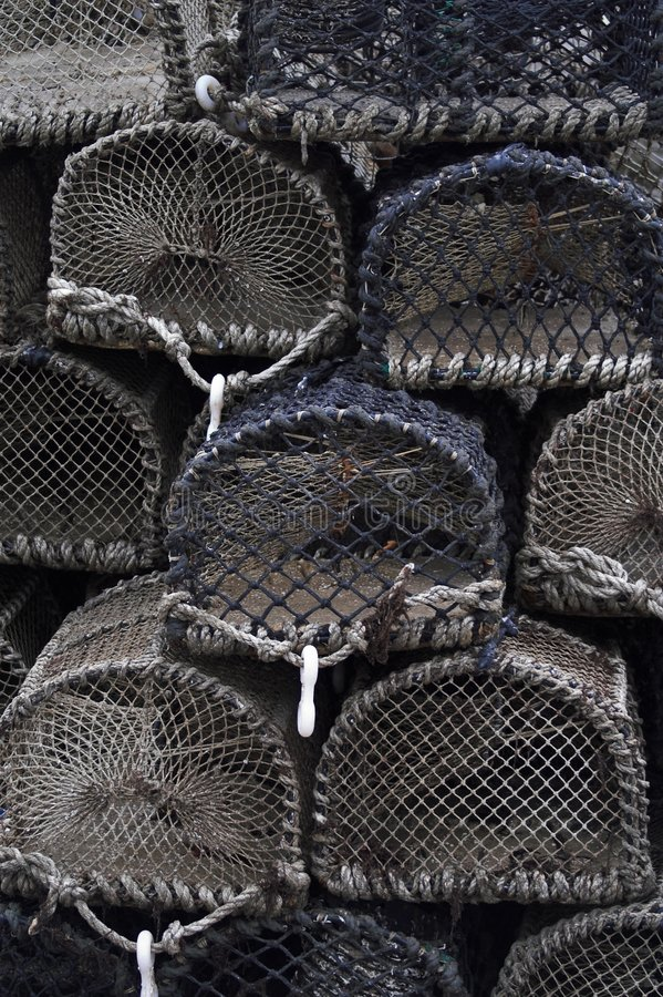 Bacs de langoustine photo libre de droits