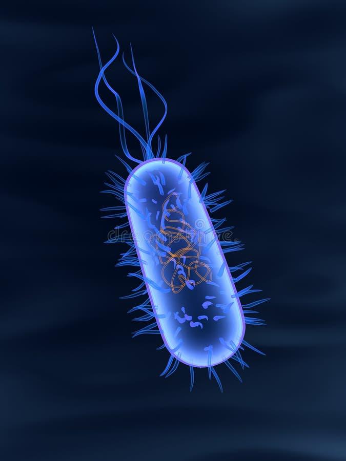 Bactéria ilustração royalty free