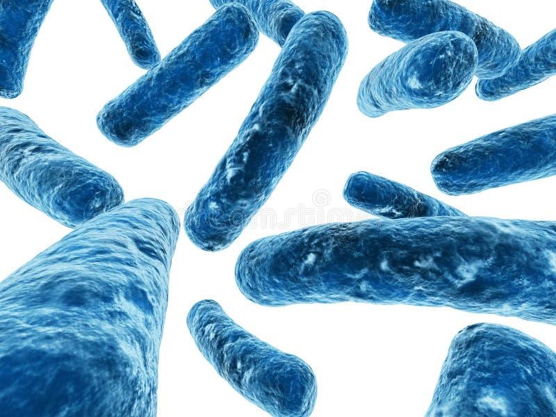 Bactérias ilustração royalty free