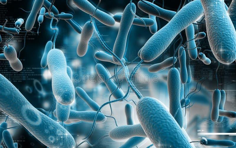 Bactérias da cólera ilustração royalty free
