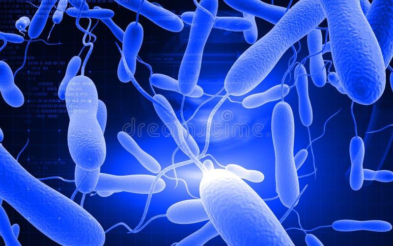 Bactérias da cólera ilustração do vetor
