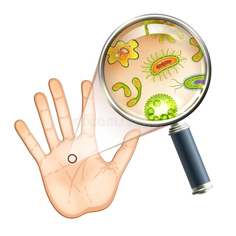 Bactérias da lente de aumento e pilhas do vírus ilustração stock