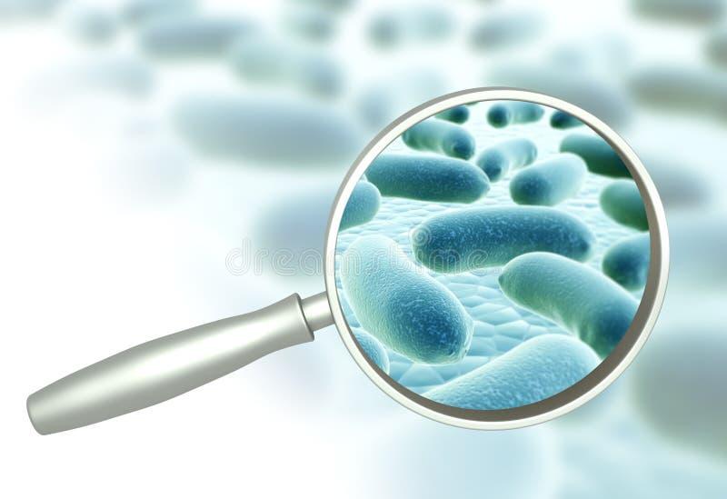 Bactérias da lupa e do micróbio patogênico ilustração stock