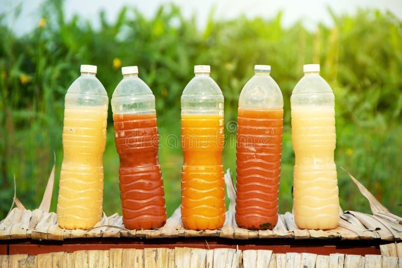 Bactérias fotossintéticas PSB em umas garrafas plásticas para a agricultura orgânica imagem de stock