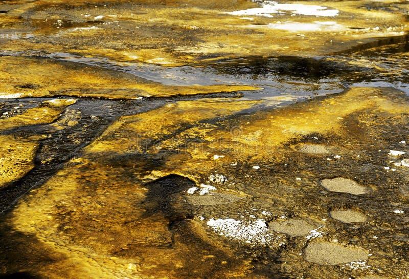 Bactérias minerais imagem de stock royalty free