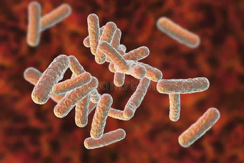 Bactérias patogênicos humanas ilustração do vetor