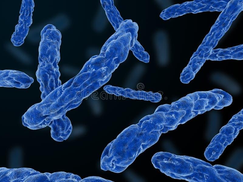Bactérias principais ilustração do vetor