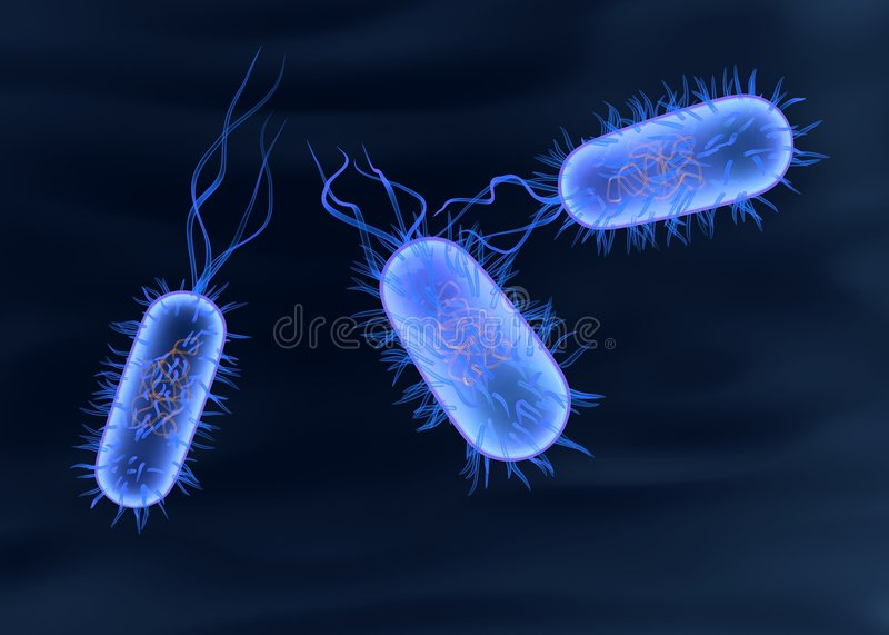 Bactérie illustration libre de droits