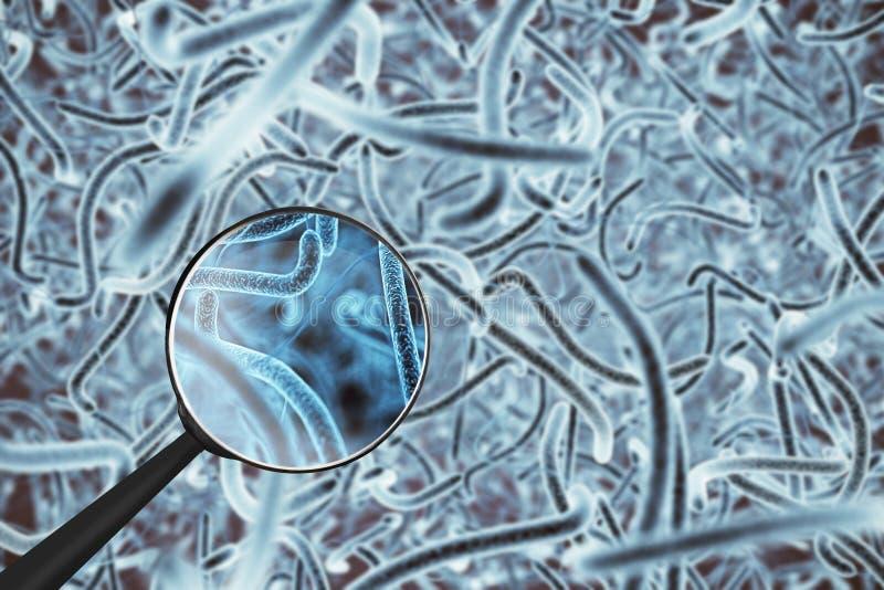 Bactéries bleues avec la loupe illustration libre de droits