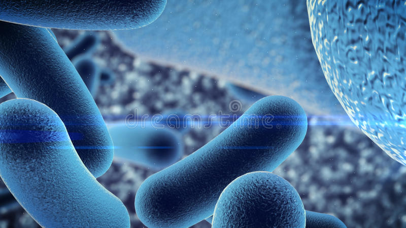 Bactéries d'un germe sous le microscope illustration de vecteur