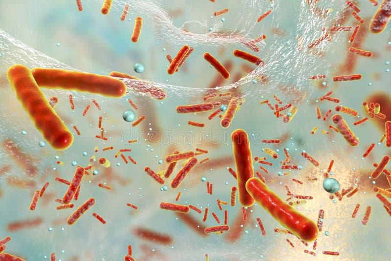 Bactéries résistantes de Multidrug à l'intérieur d'un biofilm illustration de vecteur
