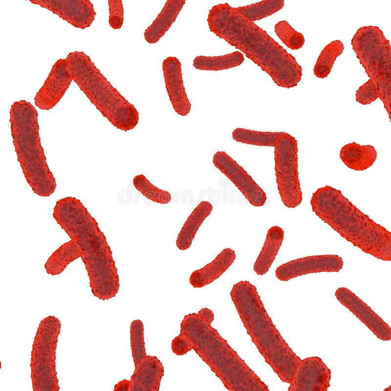 Bactéries rouges à l'intérieur du corps sur un fond d'isolement blanc illustration libre de droits