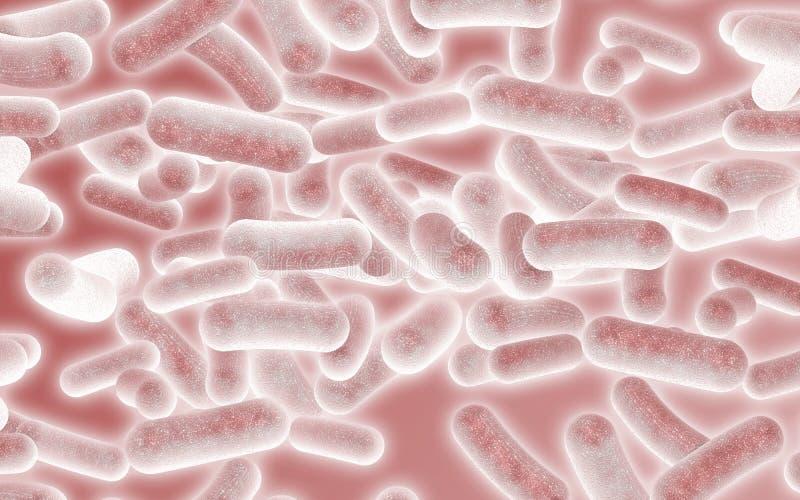 Bactéries rouges illustration libre de droits