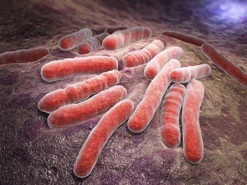 Bacteriële besmettingstuberculose royalty-vrije illustratie