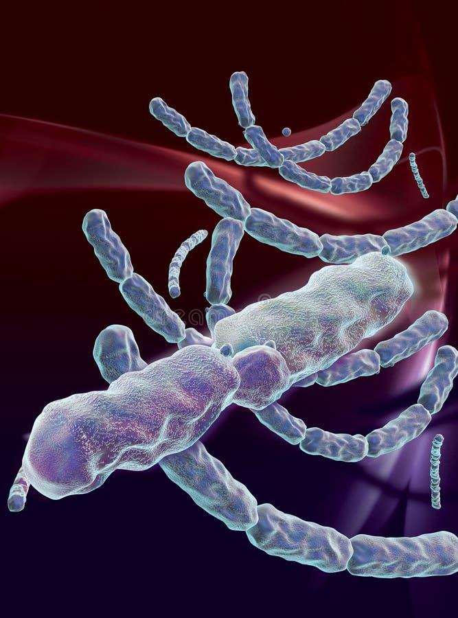 Bacteriële bloedzweer stock illustratie