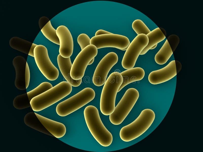 Bacteriën vector illustratie