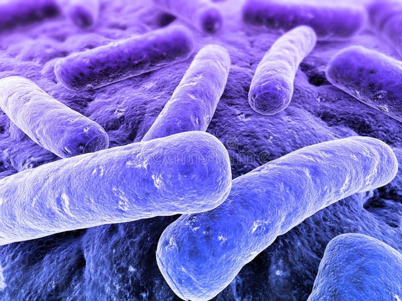 Bacteriën stock illustratie