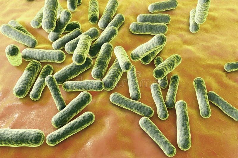 Bacteriën die acne veroorzaken royalty-vrije illustratie