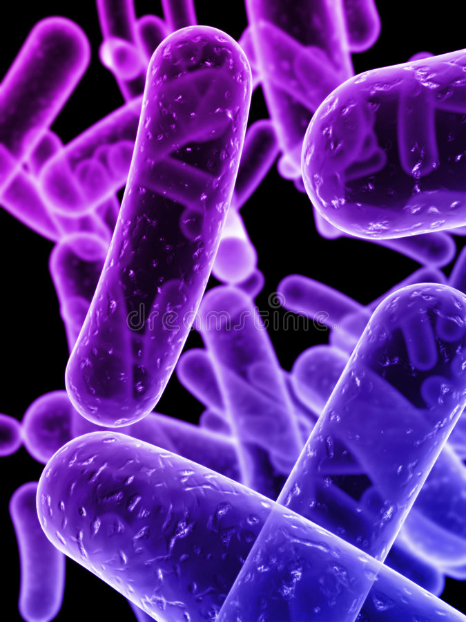 Bacteria stock images