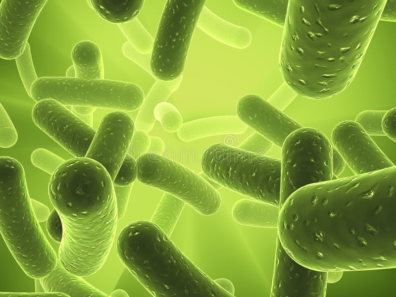 Bacteria royalty free illustration