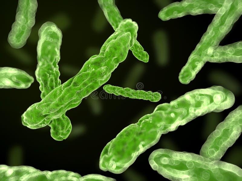Download Bacteria close up stock illustration. Illustration of medical - 23710912