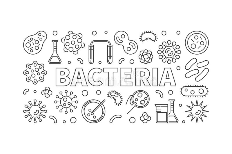 Bacteria horizontal thin line illustration. Vector concept banne. R made with viruses and bacterias linear icons vector illustration